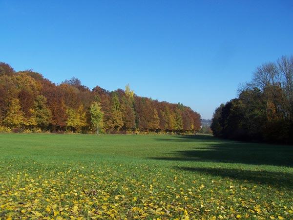Herbststimmung im Lindental