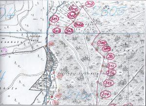 """Grenzsteinfrevel im Gewann Möglinger, Stellerain: u.a. wurden die Grenzesteine """"302"""" und """"304"""" zerstört."""